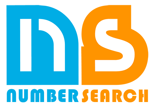 Phone Number For Number Search Logo
